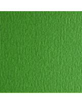 Papir Fabriano Elle Erre 220g 35x50 Verde